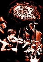 The Orchestra: a user's manual, a website about musical instruments and orchestration.